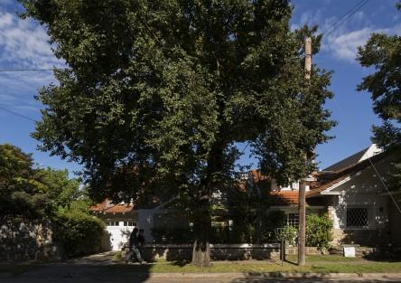 Casa Peña. Rehabilitacion. Premio Seleccion Arq Fadea-2009
